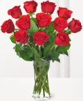 12 roses online to angelescity