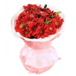 12 red gerberas send to angeles city philippines