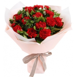 24 red carnations bouquet to angeles city