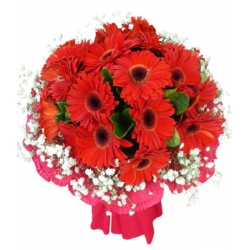 24 stems red gerbers send to angeles city philippines