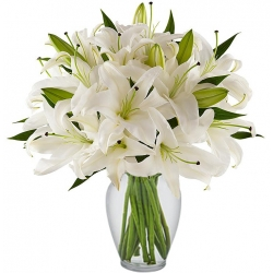 Send 6 Stem White Lilies Vase To Angeles City Philippines