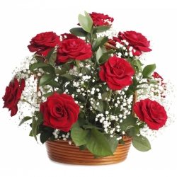 ​12 Red Roses with Green Arrangement in Flower Basket Send To Angeles City Philippines