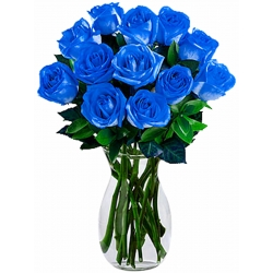 ​12 Blue Roses in Vase Send To Angeles City Philippines