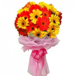 24 stems of red and yellow colored gerberas send to angeles city philippines