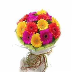 12 stems of mixed colored gerberas send to angeles city philippines