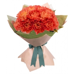 24 orange carnation send to angeles city