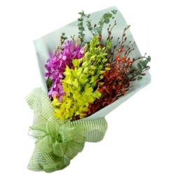 ​12 Mixed Color Orchids send to angeles city philippines