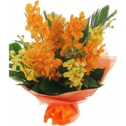 12 Yellow and Orange Orchids send to angeles city philippines