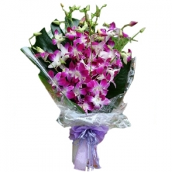 ​12 Purple Orchids send to angeles city philippines