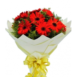 8 pcs. Red Gerberas in a Bouquet send to angeles city philippines
