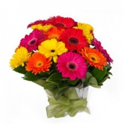 1 2 stems of mixed colored gerberas send to angeles city philippines