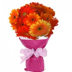 10 stems of mixed colored gerberas send to angeles city philippines