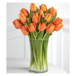 15 orange tulips send to angeles city philippines