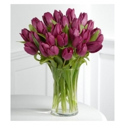 18 purple tulips send to angeles city philippines