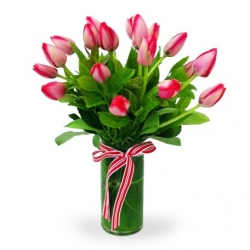 18 Pink Tulips send to angeles city philippines