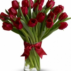 20 Red Tulips send to angeles city philippines