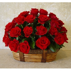 24 Red Roses in Flower Basket Send To Angeles City Philippines