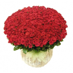 ​100 Red Roses in Flower Basket Send To Angeles City Philippines