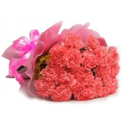 send 12 pink carnation bouquet to angeles city