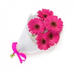 5 pcs.pink gerberas in a beautiful bouquet send to angeles city philippines