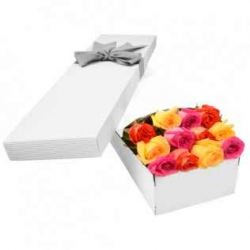 12 Mixed Color roses in a Box Send To Angeles City Philippines