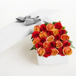 ​24 Mixed Color Roses in a Box Send To Angeles City Philippines