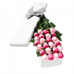 24 Pink Roses in a Box Send To Angeles City Philippines
