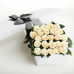 ​24 White Roses in a Box Send To Angeles City Philippines