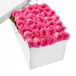 ​60 Pink Roses in a Box Send To Angeles City Philippines