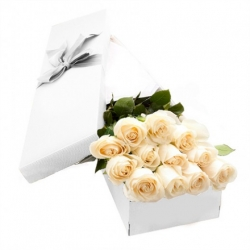 12 White Roses in a Box Send To Angeles City Philippines