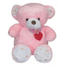 Regular Size pink Teddy Bear send to angeles city philippines