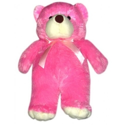 Regular Size Rocky Teddy Bear  send to angeles city philippines