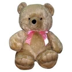 Lucky Brown Teddy Bear  send to angeles city philippines