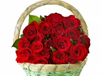 ​24 Red Roses in Flower Basket Send To Angeles City Philippines
