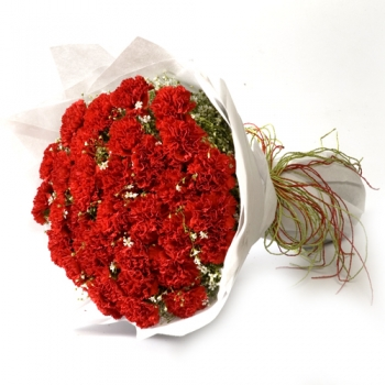 50 red carnations send to angeles city philippines