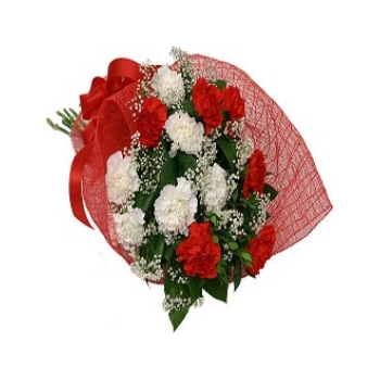 12 Red and White Carnations send to angeles city philippines