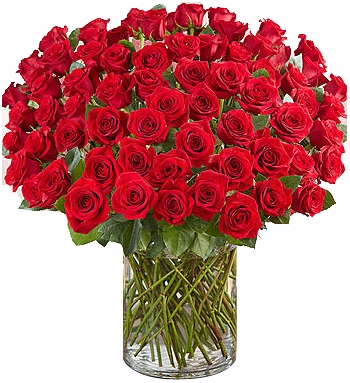 ​100 red roses vase in angeles city