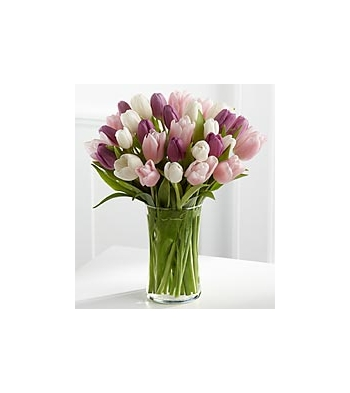 ​24 Assorted Tulips send to angeles city philippines