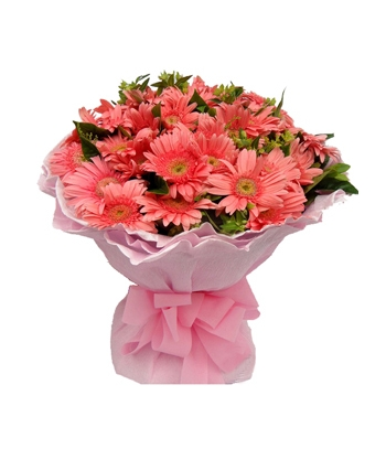 12 Pink Gerberas in a Bouquet Send To Angeles City Philippines