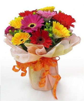 ​12 Mixed Color Gerberas in a Bouquet Send To Angeles City Philippines