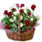 24 Red and White Roses in Flower Basket with Green Arrangement Send To Angeles City Philippines