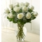 12 White Roses In Vase Send To Angeles City Philippines